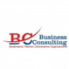 Business Consulting SRL